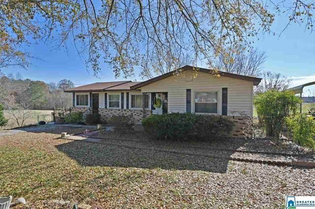 11797 Co Rd 222, Crane Hill, AL 35053 (MLS #884493) :: Bentley Drozdowicz Group