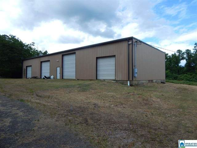 817 Shady Grove Rd, Adamsville, AL 35005 (MLS #884548) :: LocAL Realty