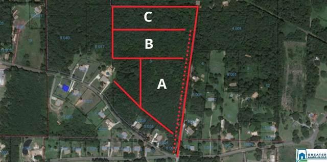 001 Sullivan Rd Parcel A, Sumiton, AL 35148 (MLS #884654) :: Bentley Drozdowicz Group