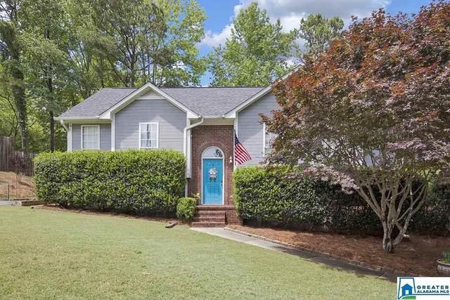 156 Laurel Oak Ln, Odenville, AL 35120 (MLS #884734) :: LocAL Realty