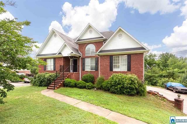 55 Black Oak Ln, Odenville, AL 35120 (MLS #884811) :: Howard Whatley