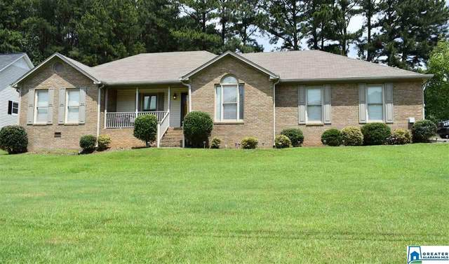 6268 Old Springville Rd, Pinson, AL 35126 (MLS #884822) :: Gusty Gulas Group