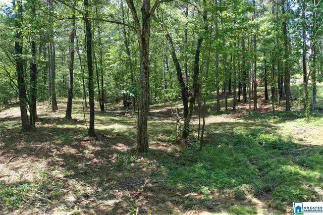0 Hwy 13 1C, Helena, AL 35080 (MLS #884911) :: Josh Vernon Group
