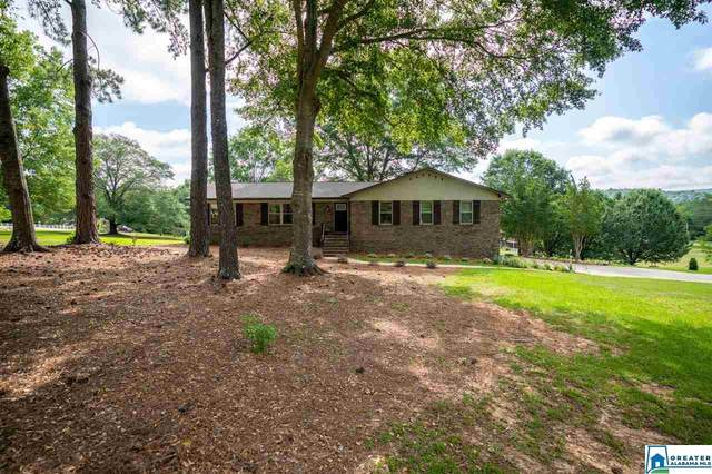 905 Spring Garden St, Indian Springs Village, AL 35124 (MLS #885292) :: LocAL Realty