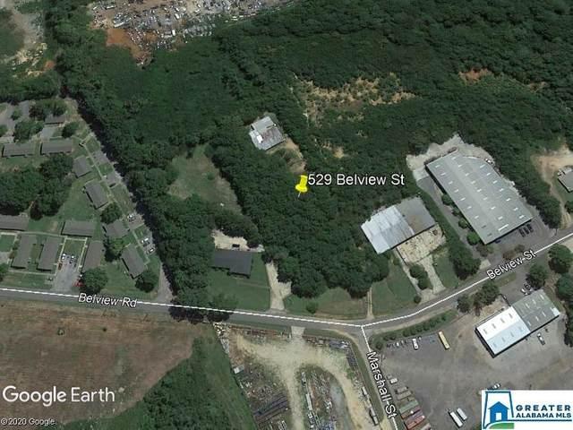 529 Belview St, Bessemer, AL 35020 (MLS #885351) :: JWRE Powered by JPAR Coast & County