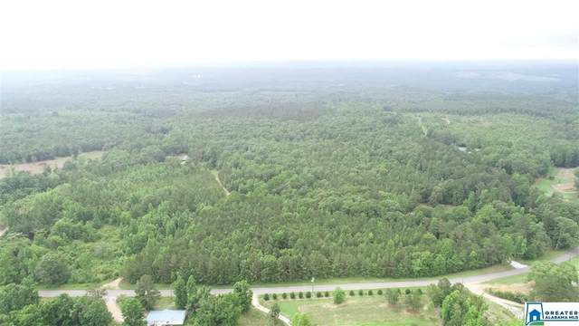 30.5 Acres Co Rd 33 #0, Wadley, AL 36276 (MLS #885650) :: Howard Whatley
