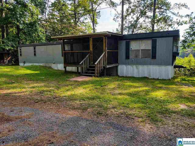 115 Satterfield Rd, Adger, AL 35006 (MLS #886166) :: LocAL Realty