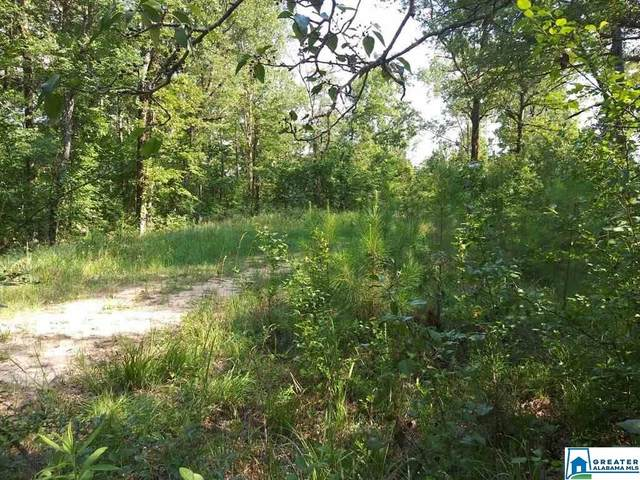 Co Rd 111 41 Acres, Montevallo, AL 35115 (MLS #886170) :: Howard Whatley