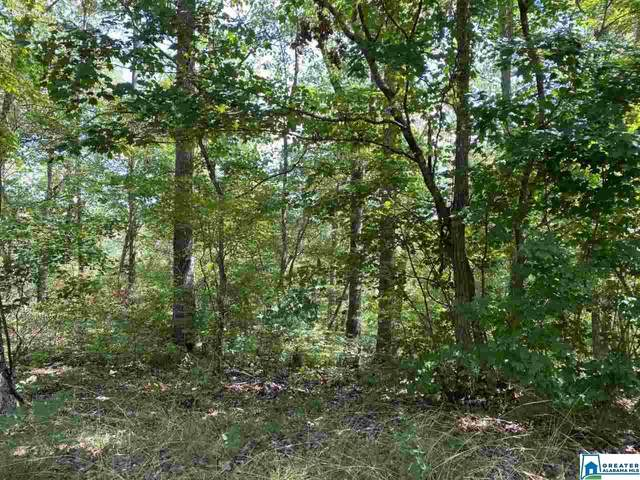 781 Ingle Point Dr #6, Bessemer, AL 35023 (MLS #886586) :: LocAL Realty