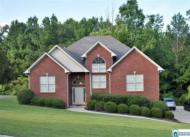 6313 Yellowhammer Dr, Pinson, AL 35126 (MLS #886744) :: Josh Vernon Group