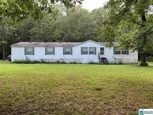 155 Edison Rd, Ashville, AL 35953 (MLS #887221) :: Bentley Drozdowicz Group