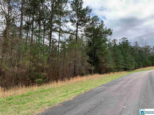 0 Long Point Rd 156/157, Double Springs, AL 35553 (MLS #887540) :: Sargent McDonald Team