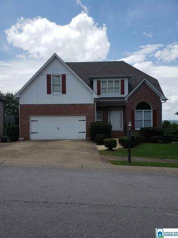 6441 Ridge View Cir, Bessemer, AL 35022 (MLS #887766) :: Sargent McDonald Team