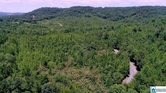 812 airport roa 10TH AVE 179 ACRES, Cleveland, AL 35049 (MLS #888174) :: JWRE Powered by JPAR Coast & County