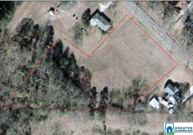 2942 Mount Olive Rd None, Mount Olive, AL 35117 (MLS #888651) :: Bentley Drozdowicz Group