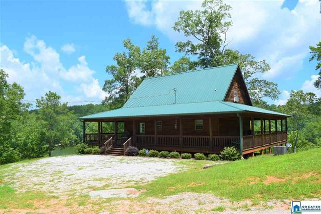 767 Co Rd 228, Wedowee, AL 36278 (MLS #889014) :: Howard Whatley