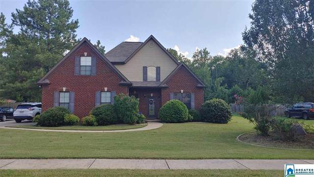 104 Chinaberry Ln, Maylene, AL 35114 (MLS #889070) :: Sargent McDonald Team