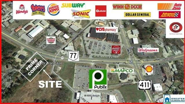 204 Grand Ave, Rainbow City, AL 35906 (MLS #891223) :: Josh Vernon Group