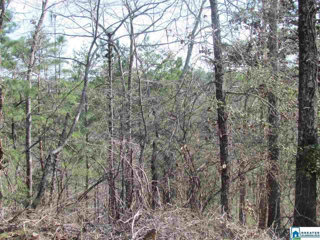 0000 Cogswell Ave Vacant 61+- Acr, Pell City, AL 35125 (MLS #891318) :: JWRE Powered by JPAR Coast & County