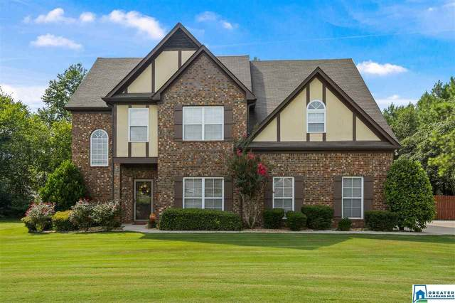 8082 Lizmore Ln, Pinson, AL 35126 (MLS #891603) :: Bailey Real Estate Group