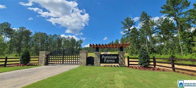 300 Big Pine Dr #2, Helena, AL 35080 (MLS #891774) :: Gusty Gulas Group