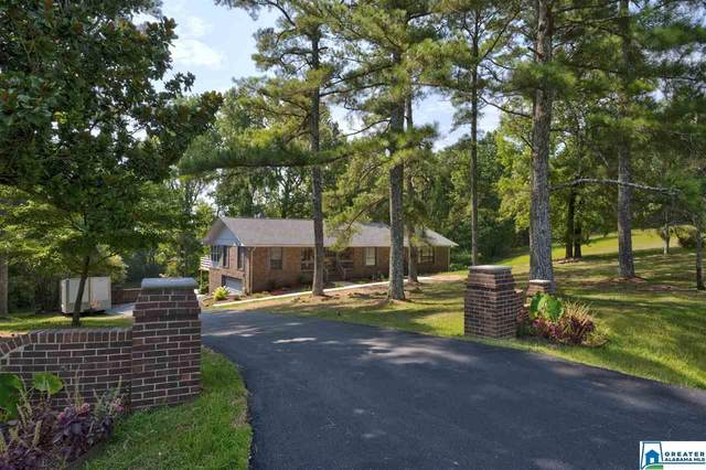 1280 Grandview Trl, Warrior, AL 35180 (MLS #891793) :: JWRE Powered by JPAR Coast & County