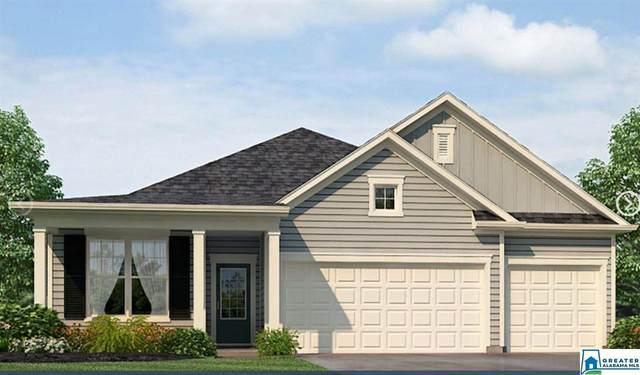 1339 Archer's Cove Ln, Springville, AL 35146 (MLS #891804) :: Bentley Drozdowicz Group