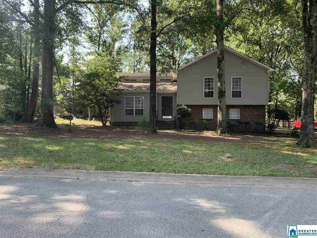 2320 Kala St, Helena, AL 35080 (MLS #892028) :: Gusty Gulas Group