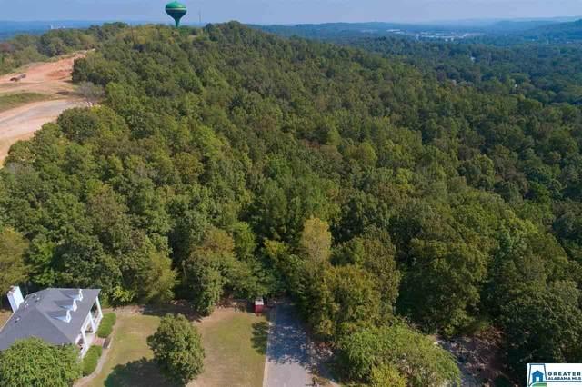 Round Hill Rd #0, Pelham, AL 35124 (MLS #892579) :: Josh Vernon Group
