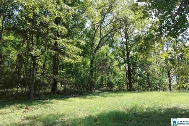 Poplar Springs Trl Tract 8, Ashville, AL 35953 (MLS #892607) :: Howard Whatley