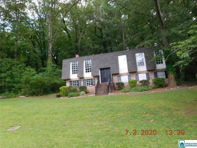 480 Hidden Valley Dr, Montevallo, AL 35115 (MLS #892790) :: Sargent McDonald Team