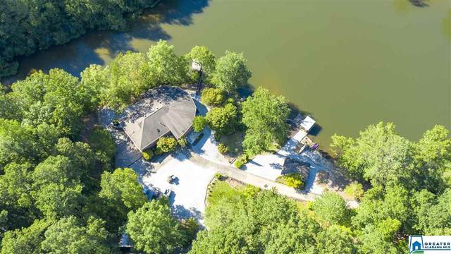 654 Belcher Rd, Chelsea, AL 35043 (MLS #892836) :: JWRE Powered by JPAR Coast & County
