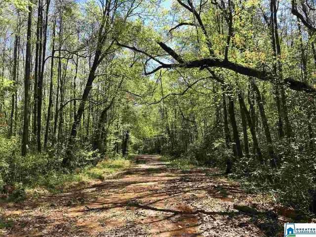 Co Rd 334 158 Acres, Billingsley, AL 36758 (MLS #893345) :: Howard Whatley