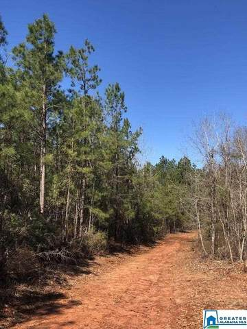 Co Rd 39 145 Acres, Selma, AL 36701 (MLS #893372) :: Howard Whatley