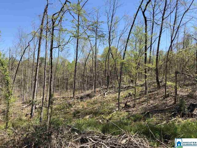 Co Rd 336 49 Acres, Maplesville, AL 36758 (MLS #893474) :: Bentley Drozdowicz Group