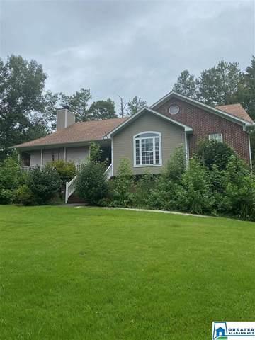 1341 Sardis Rd, Gardendale, AL 35071 (MLS #893583) :: Bailey Real Estate Group