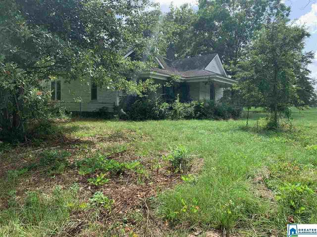 5588 Birmingport Rd, Mulga, AL 35118 (MLS #893653) :: Sargent McDonald Team