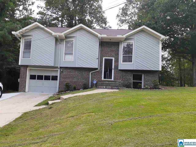 5248 Stevens Ct, Mount Olive, AL 35117 (MLS #893835) :: Bentley Drozdowicz Group