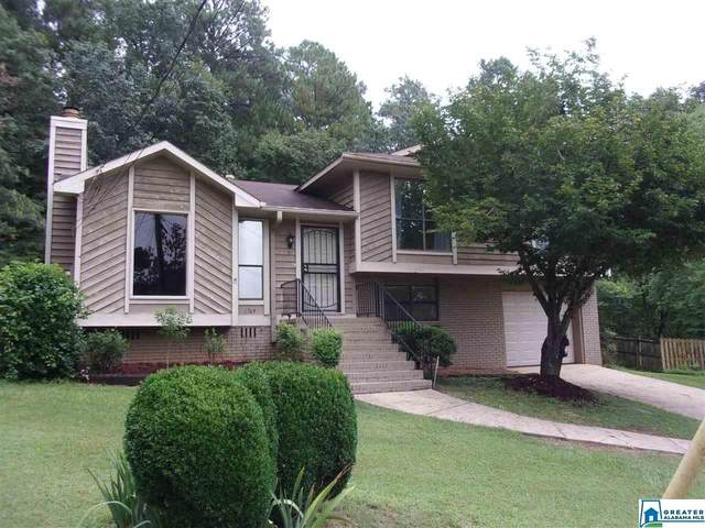 1769 Molly Dr, Birmingham, AL 35235 (MLS #893980) :: Sargent McDonald Team