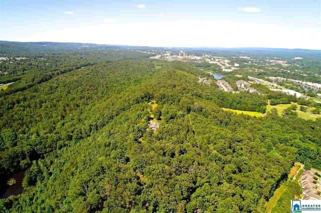 4608 Scenic View Trc #0, Birmingham, AL 35244 (MLS #894218) :: Josh Vernon Group