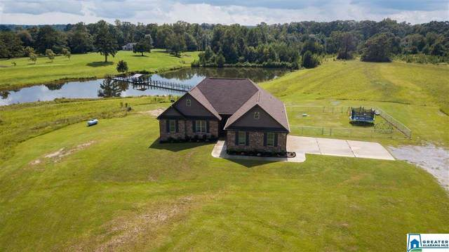 2621 Co Rd 81, Clanton, AL 35045 (MLS #894313) :: Gusty Gulas Group