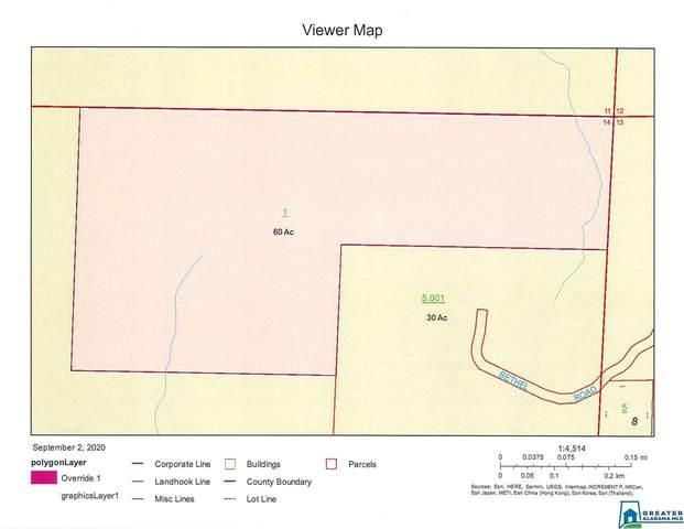 60 Acres Co Rd 99 60 Acres, Wedowee, AL 36278 (MLS #894380) :: JWRE Powered by JPAR Coast & County