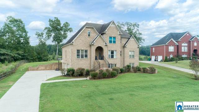 20743 Waters View, Mccalla, AL 35111 (MLS #894642) :: Bentley Drozdowicz Group