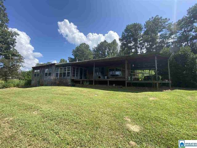 2646 Happy Top Rd, Morris, AL 35116 (MLS #894762) :: Bailey Real Estate Group