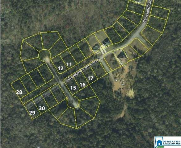 LOT #17 Cleveland Farms Pkwy #17, Odenville, AL 35120 (MLS #894777) :: JWRE Powered by JPAR Coast & County