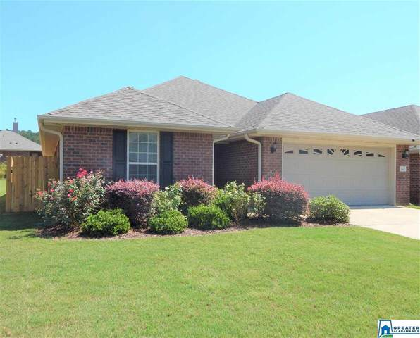 845 Clover Ave, Odenville, AL 35120 (MLS #894808) :: LocAL Realty