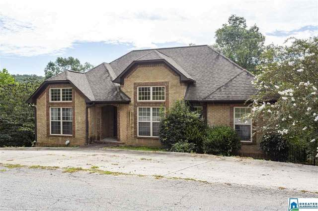 196 Ridgewood Dr, Remlap, AL 35133 (MLS #894825) :: Bailey Real Estate Group
