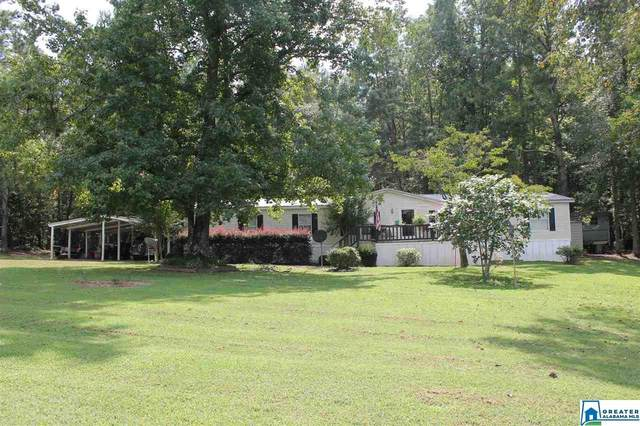 179 Hoover Rd, Odenville, AL 35120 (MLS #894910) :: Bailey Real Estate Group
