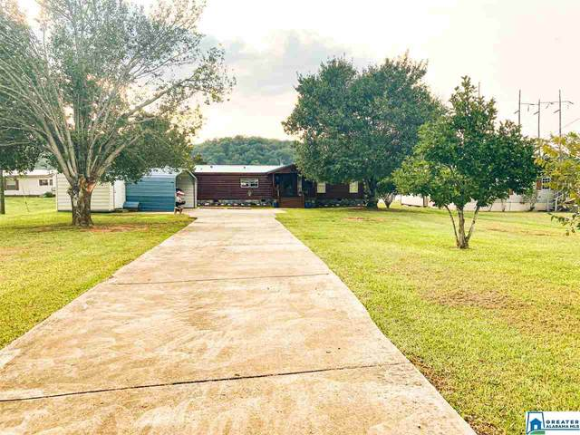 406 Michaels Cove, Lincoln, AL 35096 (MLS #895034) :: Gusty Gulas Group