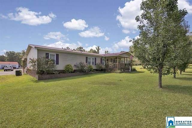 4045 Nixon Rd, Bessemer, AL 35022 (MLS #895035) :: Bentley Drozdowicz Group